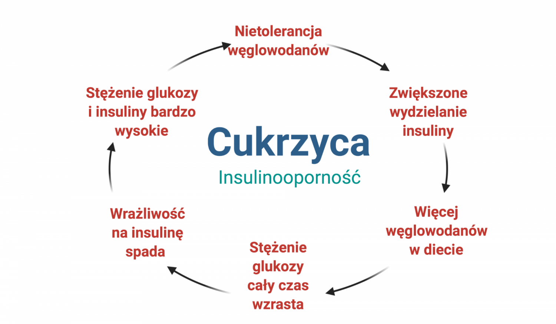 cukrzyca  insulinooporność lchf dieta