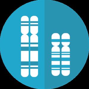 FTO gen odchudzanie