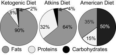 ile białka na diecie ketogenicznej